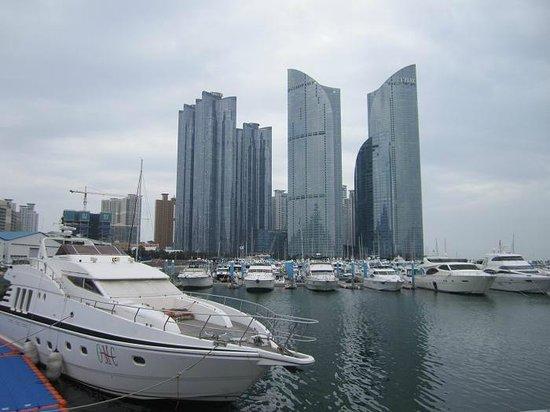 Park Hyatt Busan: View from Busan Marina