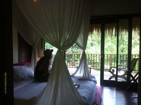 Nandini Jungle Resort & Spa: this is what we saw wen we first walked in :)