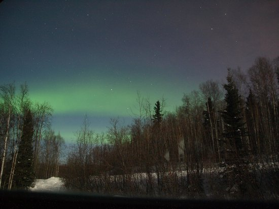 A Moose in the Garden: Aurora from the window of the loft