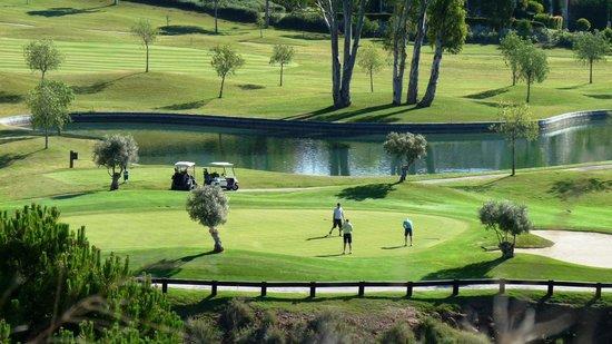 El Higueral Golf: Green 6 Higueral Golf, Marbella, Costa del Sol