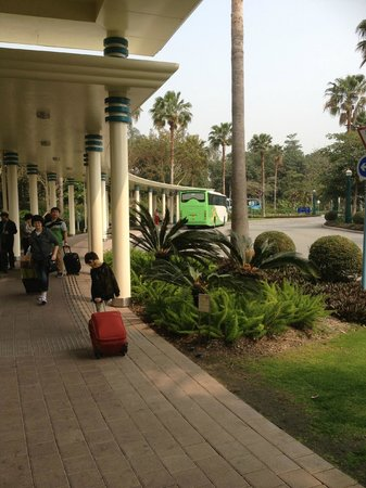 Disney's Hollywood Hotel: Pathway to shuttle bus stop
