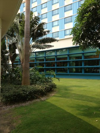 Disney's Hollywood Hotel: refreshing view of green grass