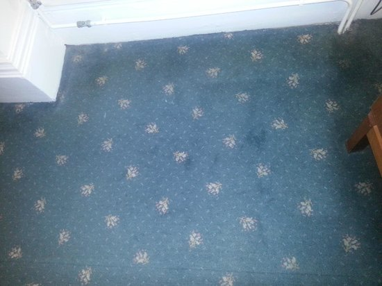 The Hind Hotel: carpet in my room was covered in dirty stains