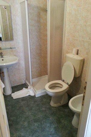 Soggiorno Pitti: Bagno della camera