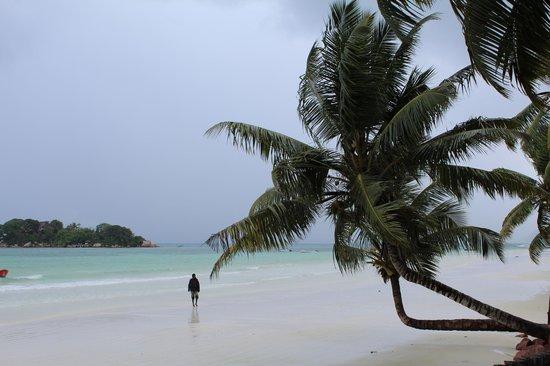 Isla de Praslin, Seychelles: Вид пляжа