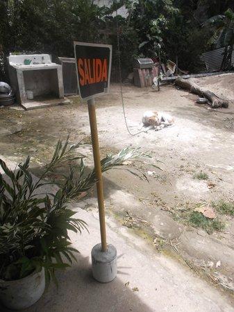 El Serpentario: Toutou Salida !   17 mars 2013.