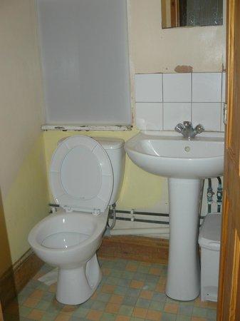 Bristol Backpackers Tourist Hostel: Corridor Toilet