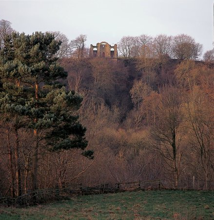 The Ruin as seen from the Hackfall gardens below