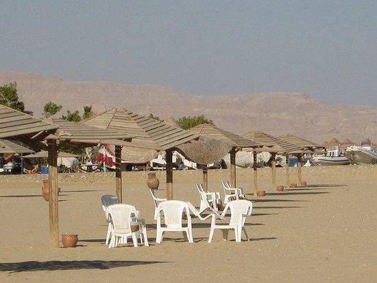 Jaz Little Venice Golf Resort: Beach