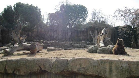 Zoo Aquarium de Madrid: 2
