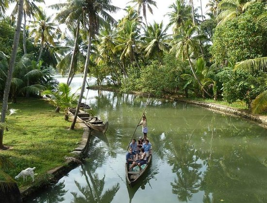 Munroe Island Backwaters Canoe Tours