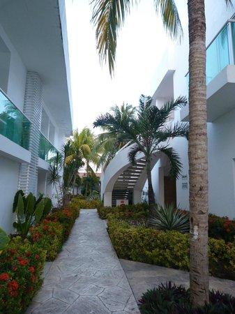 Hotel Los Cocos: cour de l'hôtel