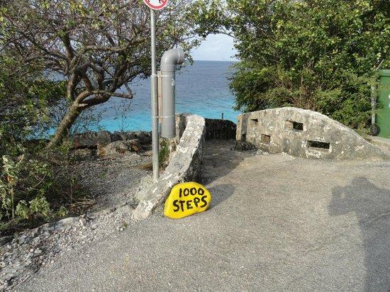 Bruce Bowker's Carib Inn: 1000 Steps dive site marker