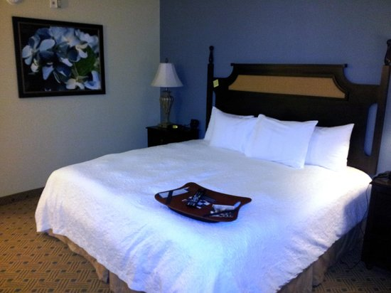 Hampton Inn Murrells Inlet/Myrtle Beach Area: Bed