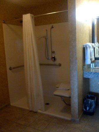 Comfort Suites Speedway, Kansas City : Room 308 bathroom