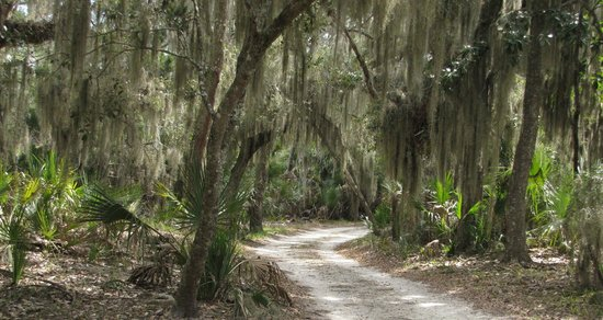 The Lodge on Little St. Simons Island: Spectacular scenery