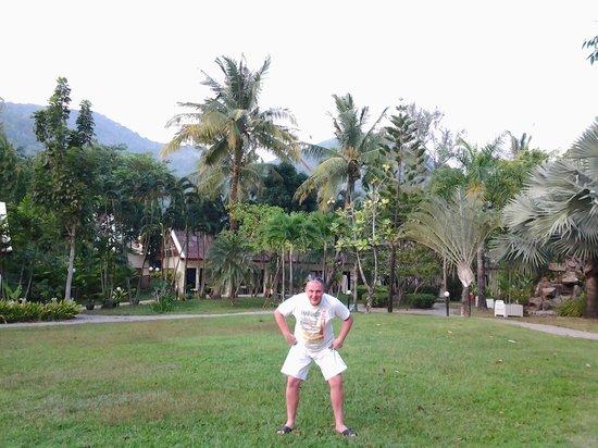 Deevana Patong Resort & Spa : вид на сад