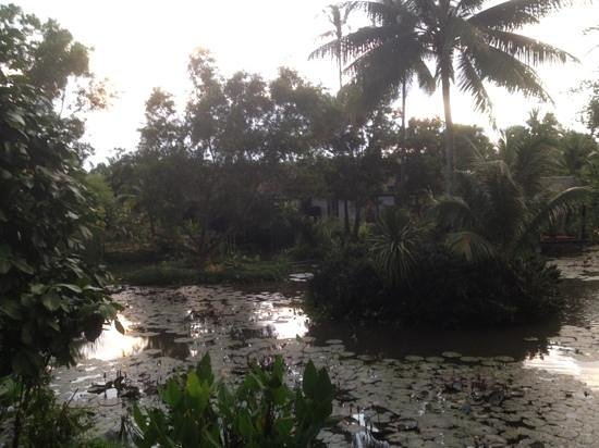 Anantara Mai Khao Phuket Villas: lagoon view