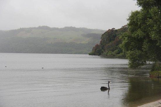 Ramada Resort Rotorua Marama: Vista del lago desde el jardín