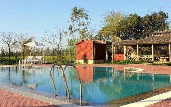Garhmukteshwar, Indien: The Pool