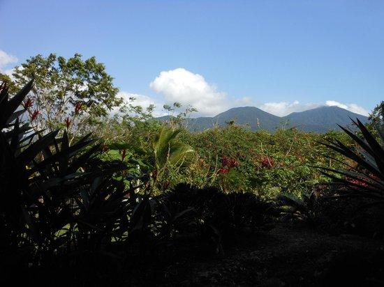 B&B Hotel Sueño Celeste: Vue sur Tenorio
