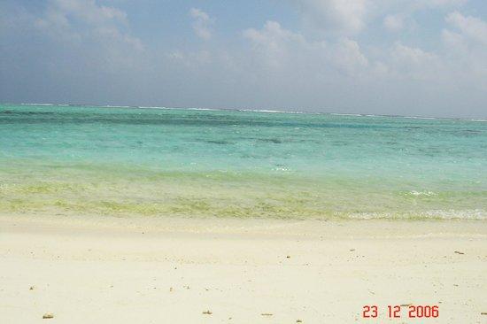 Adaaran Select Hudhuranfushi : beach