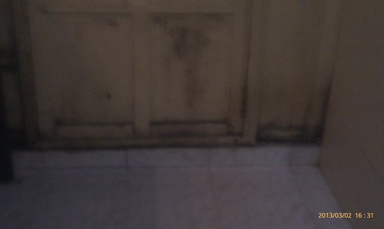 Coorg County Resort: rotten bathroom plywood door