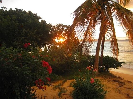 Mango Bay Resort : Beautiful sunsets from the comfy chairs on the covered patio