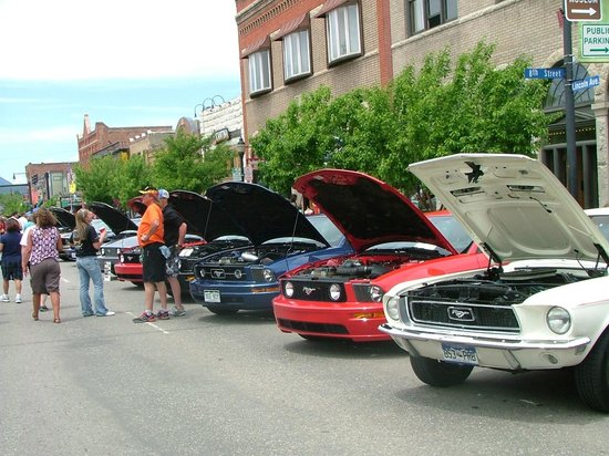 Steamboat Springs Chamber Resort Association Visitor Center: Rocky Mountain Mustang Round Up