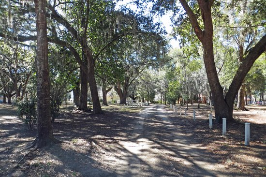 Hopsewee Plantation: Entrance drive from US17