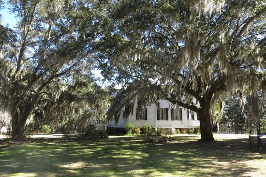 Hopsewee Plantation: West side of house