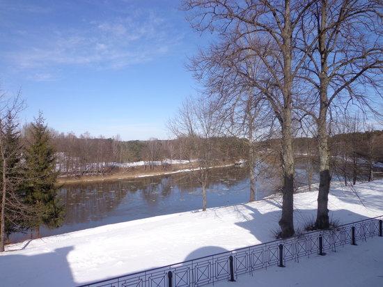 Violeta Viesbutis Hotel : River Nemunas view from the hotel