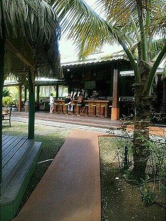 Coco Palm Resort : Bar @ Coco Palm