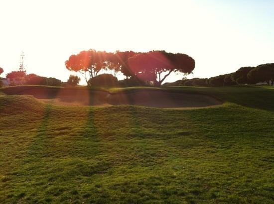 Lesters Golf: Pinahl bei Twilight im Januar