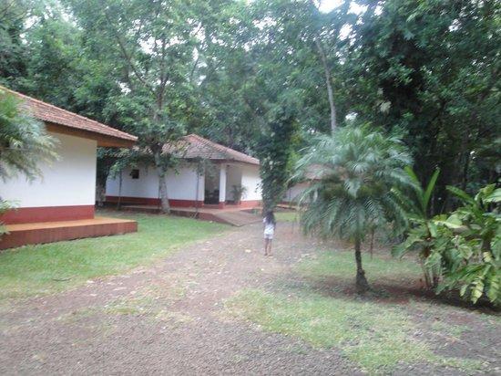 Orquideas Hotel & Cabanas: camino a la cabaña