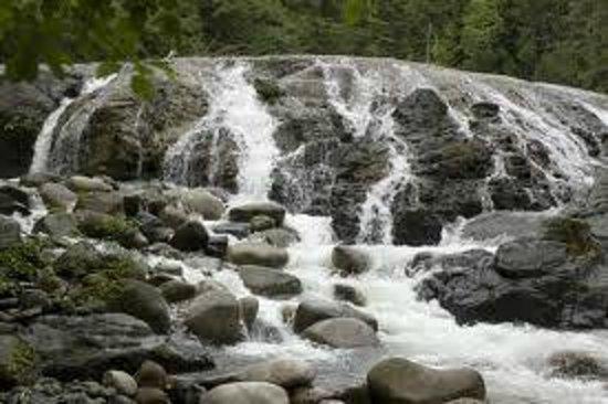 Blue Haven B & B: Englishman River Falls