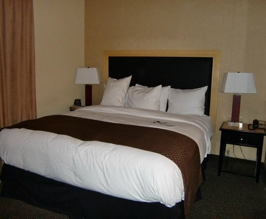 DoubleTree by Hilton Hotel Baton Rouge: Very comfortable king bed