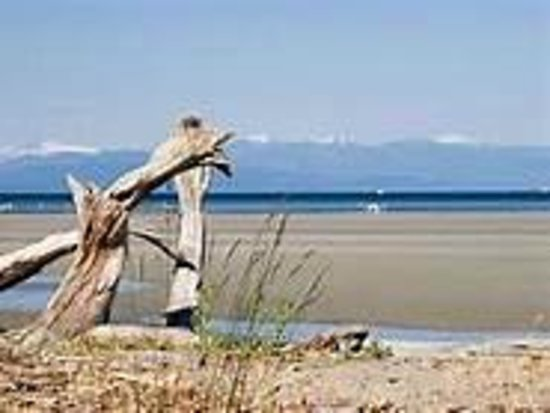 Blue Haven B & B: Parksville Beach