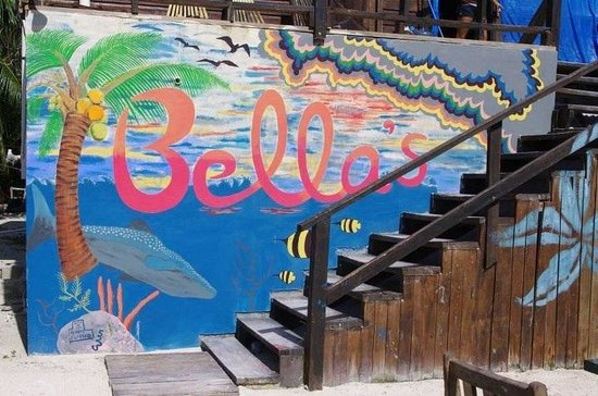 Bella's Backpackers: Front wall