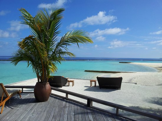 Baros Maldives: View from the shore