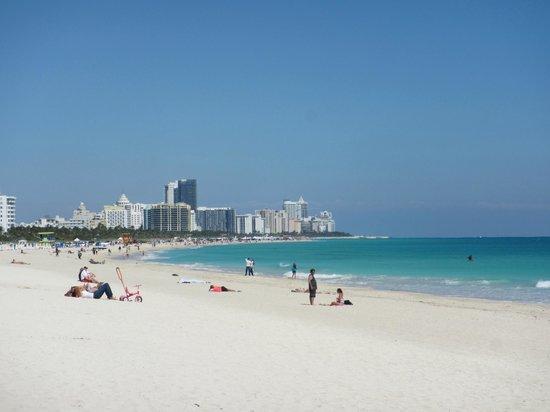 Parque South Pointe: Vista de Miami Beach desde South Pointe Park