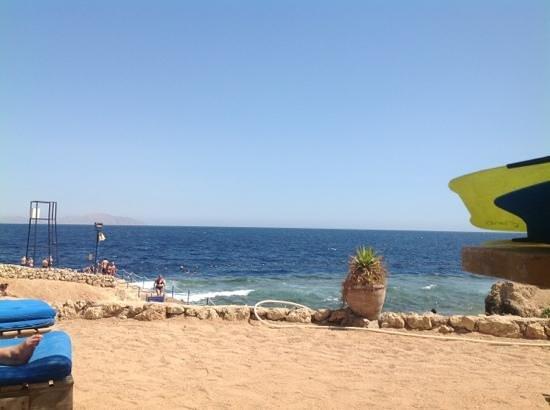 Shores Aloha Resort: пляж
