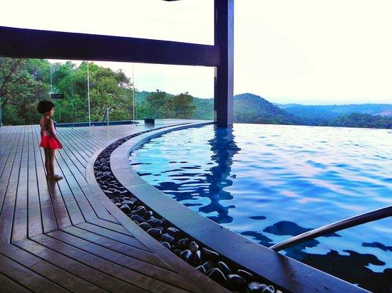 Heated pool picture of taj madikeri resort spa coorg - Resorts in madikeri with swimming pool ...