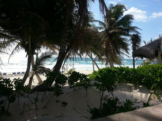 Cabanas Tulum: Room 19 - View from our porch