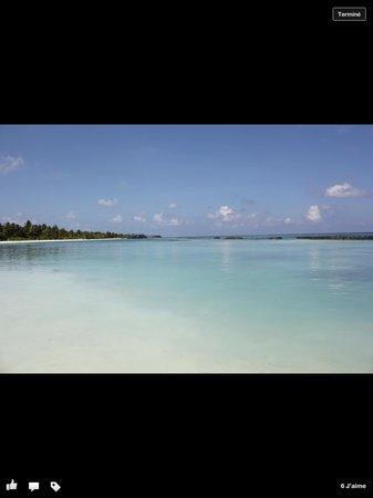 Kuredu Island Resort & Spa: Plage