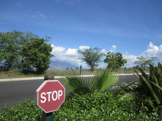 Wailea Old Blue Course: See they actually tell you to stop ...so why not smell the roses!