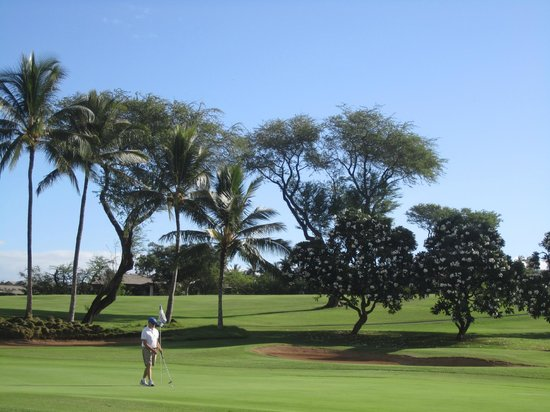Wailea Old Blue Course : Generous wide fairways we never lost a ball although the greens were not kind.