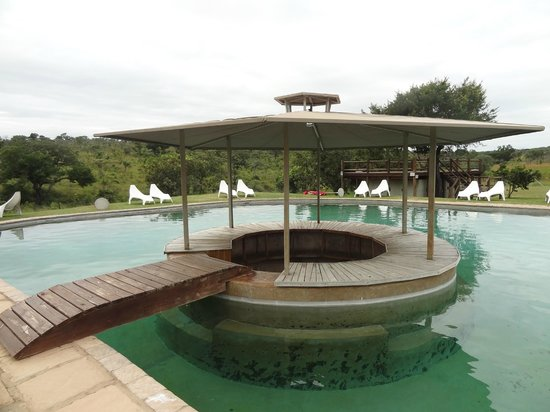Nkambeni Safari Camp: piscine