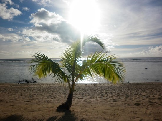 Crown Beach Resort & Spa: Sunsets and palm trees