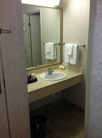 La Quinta Inn & Suites Valdosta / Moody AFB: bathroom 2